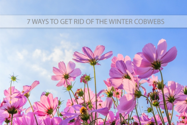 7 Ways to Get Rid of the Winter Cobwebs